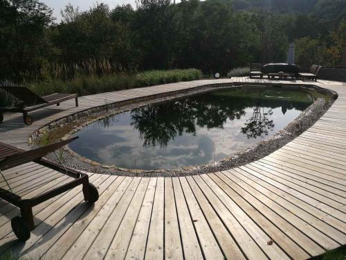 Schwimmteich & Naturpool